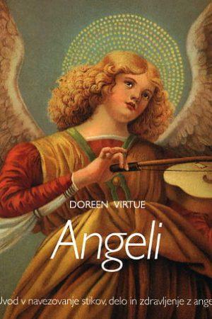 angeli 2060 1