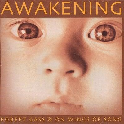awakening 397 1