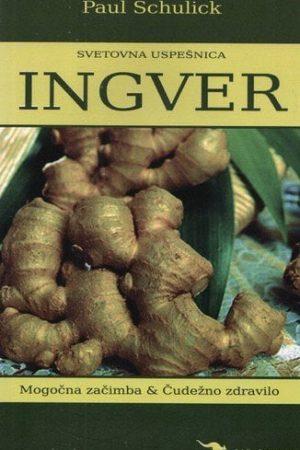 ingver mogočna začimba in čudežno zdravilo 389 1
