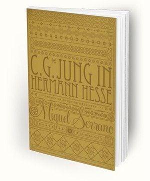 naslovnica cgjung in hermann hesse spomin na dvoje prijateljstev 91 1