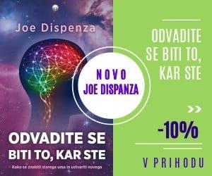 joedispanza_300x250